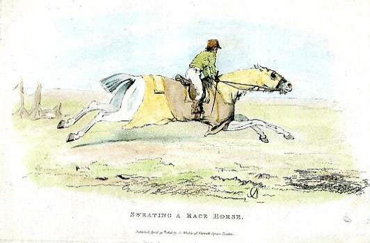 Sweating a race horse in 1816